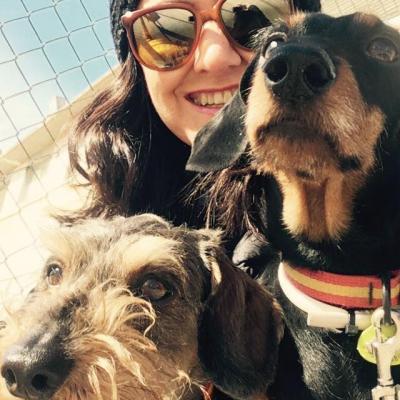 Perro con Lady y Mina