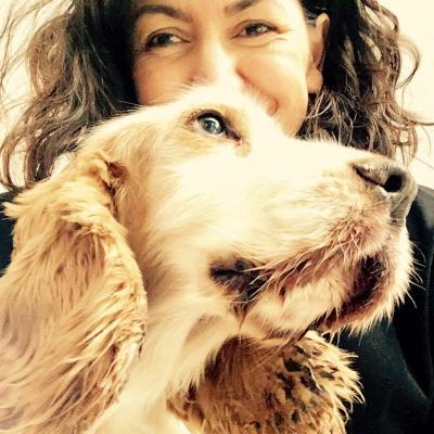 Perro con Bretxo