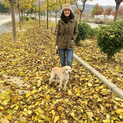 Perro con Toby